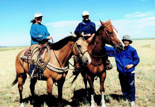 カルガリーの馬